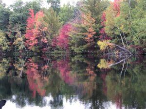 by-L.-Putz---Fall-on--Lake-1