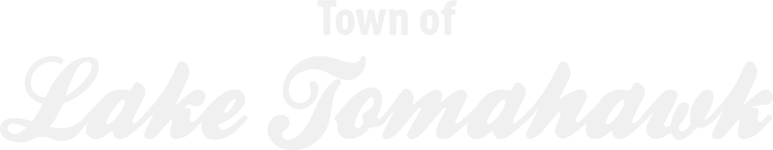 Town of Lake Tomahawk